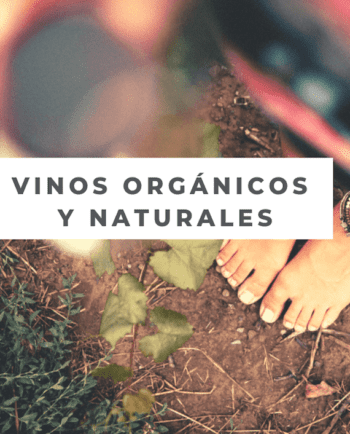 vinos organicos y naturales bundle